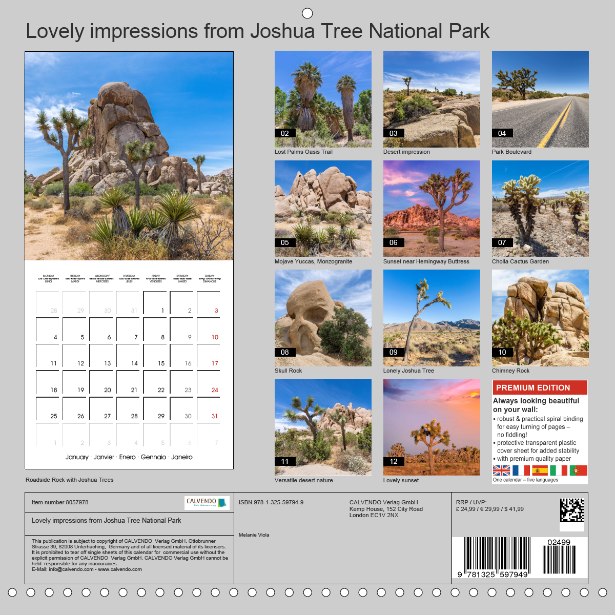 Calendar back - Lovely impressions from Joshua Tree National Park