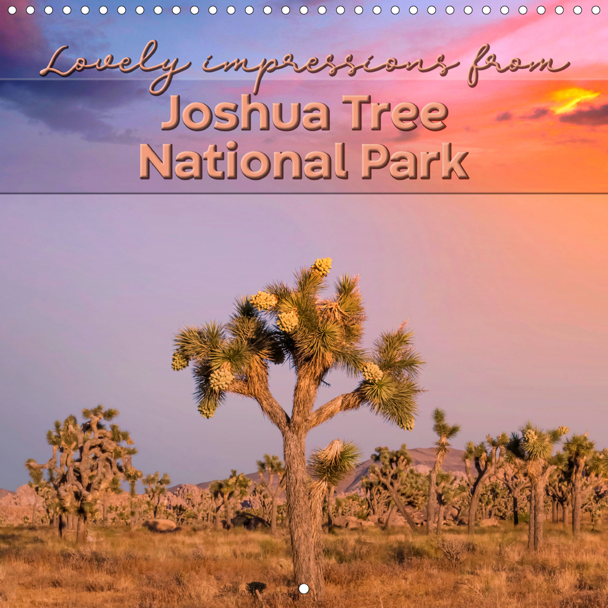 Calendar front - Lovely impressions from Joshua Tree National Park