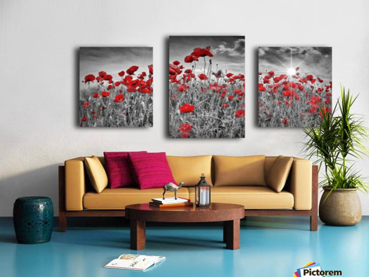 """Idyllic Field of Poppies with Sun"" - Link to PICTOREM"